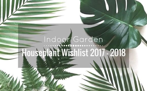 Indoor Garden : Houseplant wishlist 2017-2018