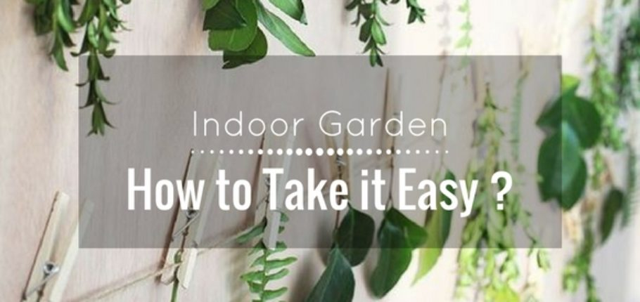 Indoor garden : How to take it easy ?